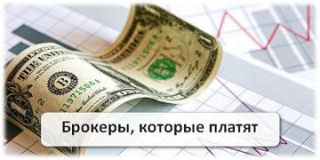 Обмен киви на биткоин от 100-11