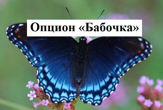 Бабочка Для Опционов